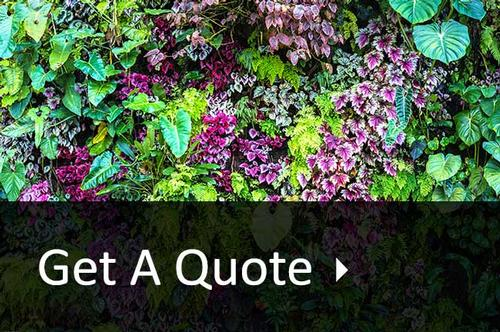 Landscaping and building quotes in Surrey